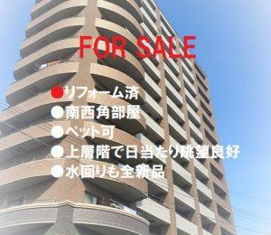 住吉清水丘シティータワー 11階部分 リフォーム済