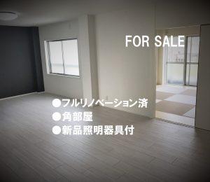 帝塚山コンド フルリノベーション済 新品照明器具付