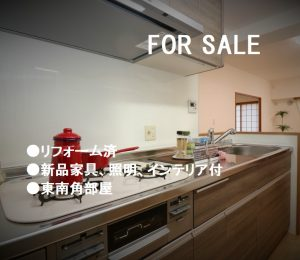グランドメゾン住之江公園 リフォーム済 新品家具、照明、インテリア付